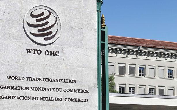 Jesús Seade y la OMC