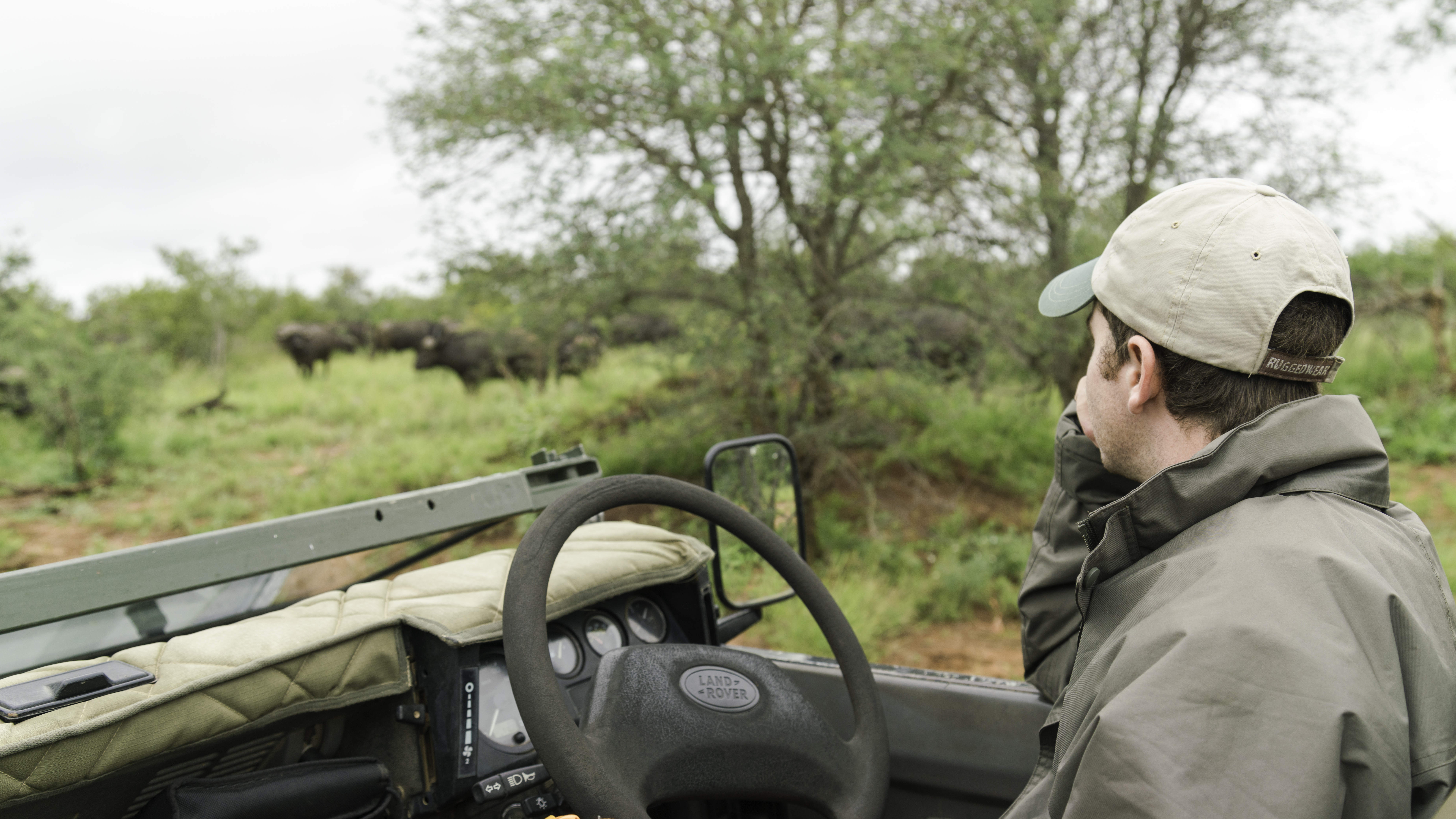 Natural Earth Safaris Guided Safaris