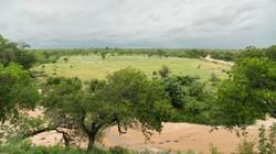 Natural Earth Safaris Landscape