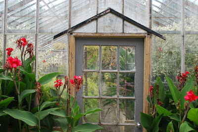 The Vasser College greenhouse