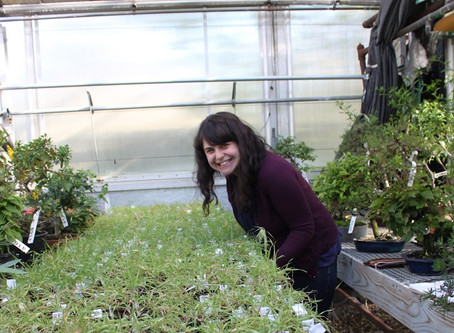 Welcome to Plant Love Stories!! And: How I became a botanist in New Jersey