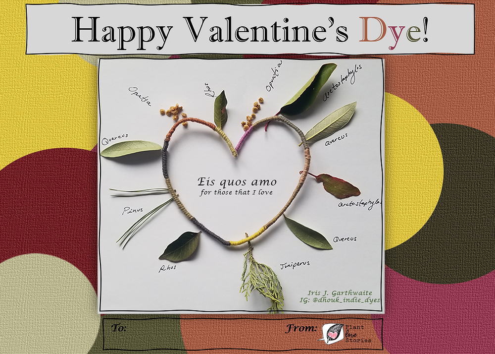 "Heart made of dyed thread with the plants that made the dyes, with the words ""Happy valentine's dye"" and ""For those that I love"""