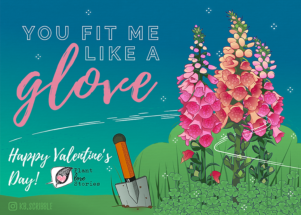 "Illustration of pink flowers, foxglove plant, with the words ""You fit me like a glove, Happy valentines day!"""