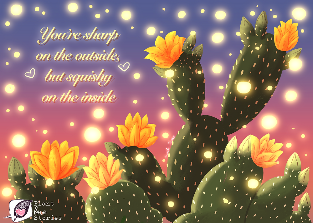 "Illustration of a rabbit ear cactus with the words ""you're sharp on the outside but squishy on the inside"""