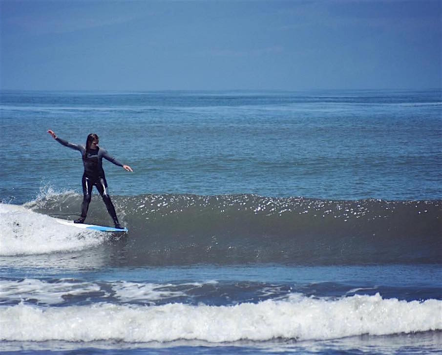 Kelp – A Surfer's Guide to the Most Loveable Plant Impersonator in the Water