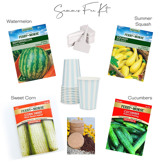 Summer Fun Gardening Kit
