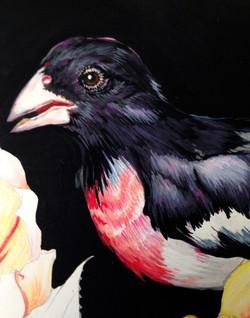 birdhead-in progress