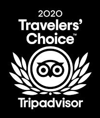 Travelers choice award 2020.png