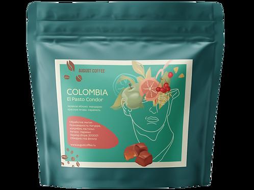 Colombia Narino El Pasto Condor