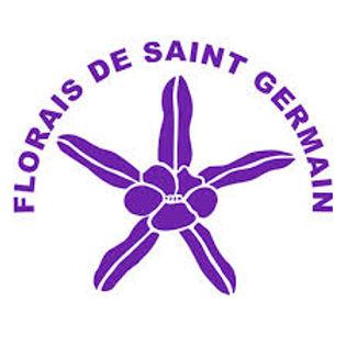 Logo FSG.jfif