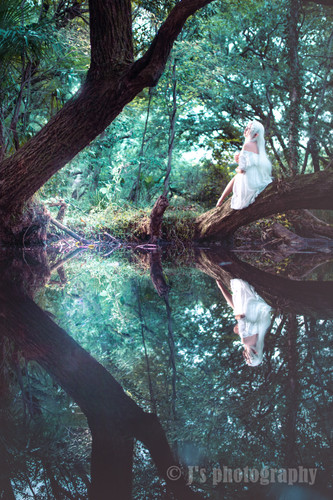 エルフの棲む森