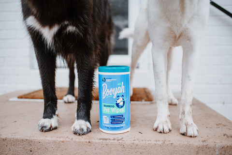 Booyah Pets Paw Wipes