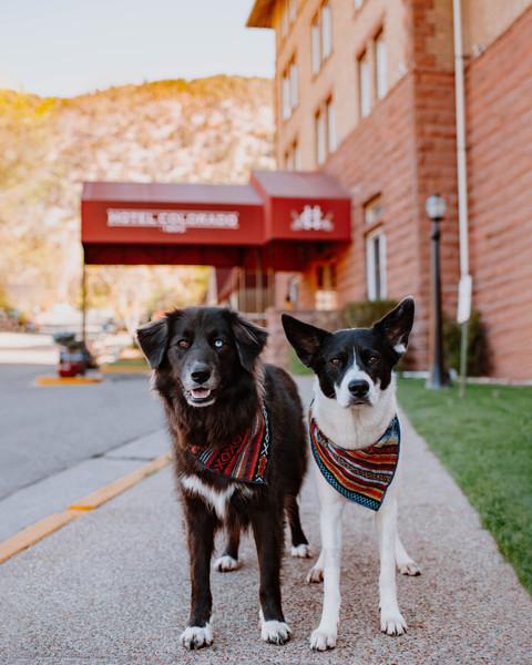 Hotel Colorado 10/2020