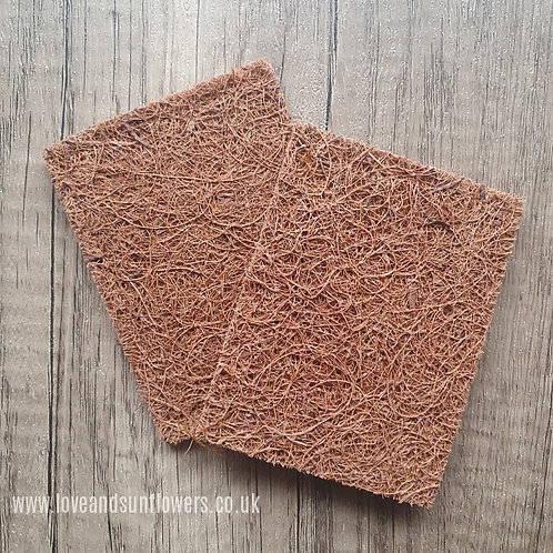 Coconut Scrub Pad