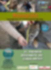 Cartell_taller_per_a_famílies.jpg