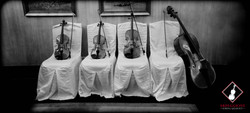 Arpeggione Instruments