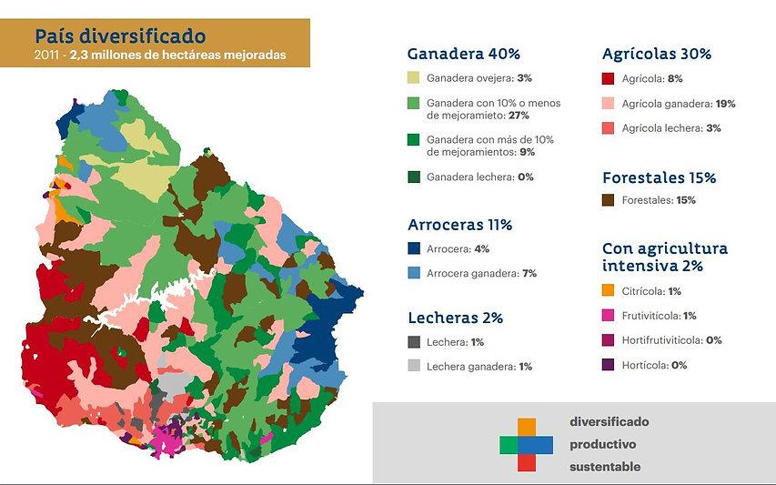 ROU hectareas mejoradas.jpg