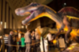 World touring exhibitions for hire: travelling bricks (made of LEGO bricks), Living Dinosaurs, Ice Age, Experience Da Vince, Monsters of the Sea, Space the Final Frontier, Interactive Science, Marilyn Monroe, Human Being the Science Within and more new touring exhibitions. www.worldtouringexhibitions.com
