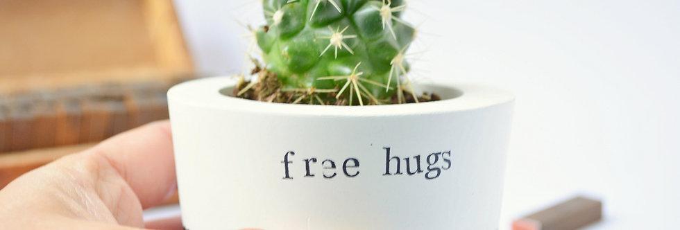 "Cactus vase ""free hugs"""