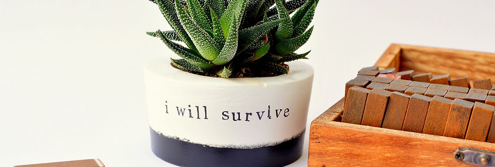 "Succulent vase ""i will survive"""