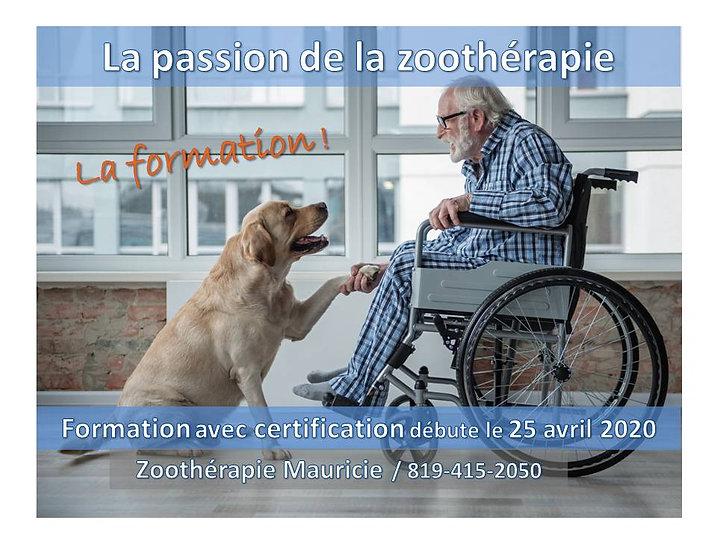 formation_zoothérapie_mauricie.jpg