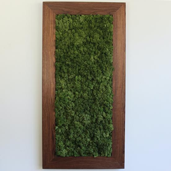 Walnut Frame Moss Art