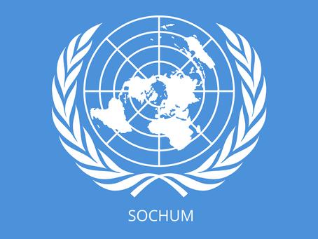 SOCHUM - Comité de Asuntos Sociales, Humanitarios y Culturales