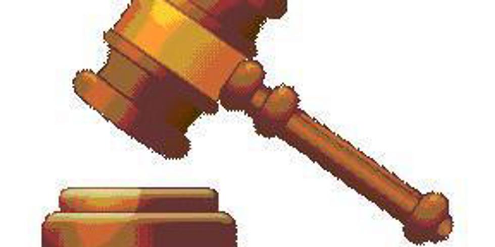 Dommerklubben Fløjten - Generalforsamling 2020
