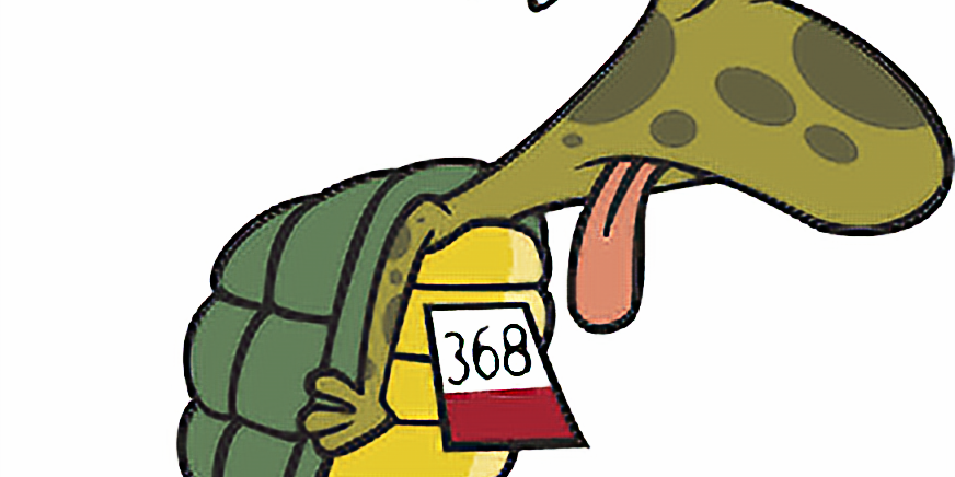 Spisning Skildpaddeløb 12/8-20