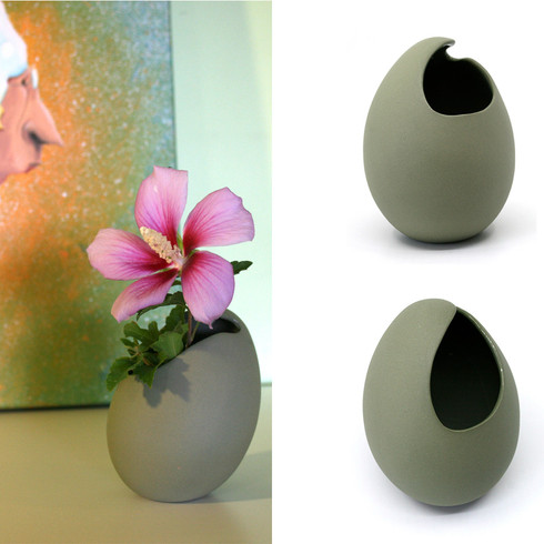 From Egg to Plant