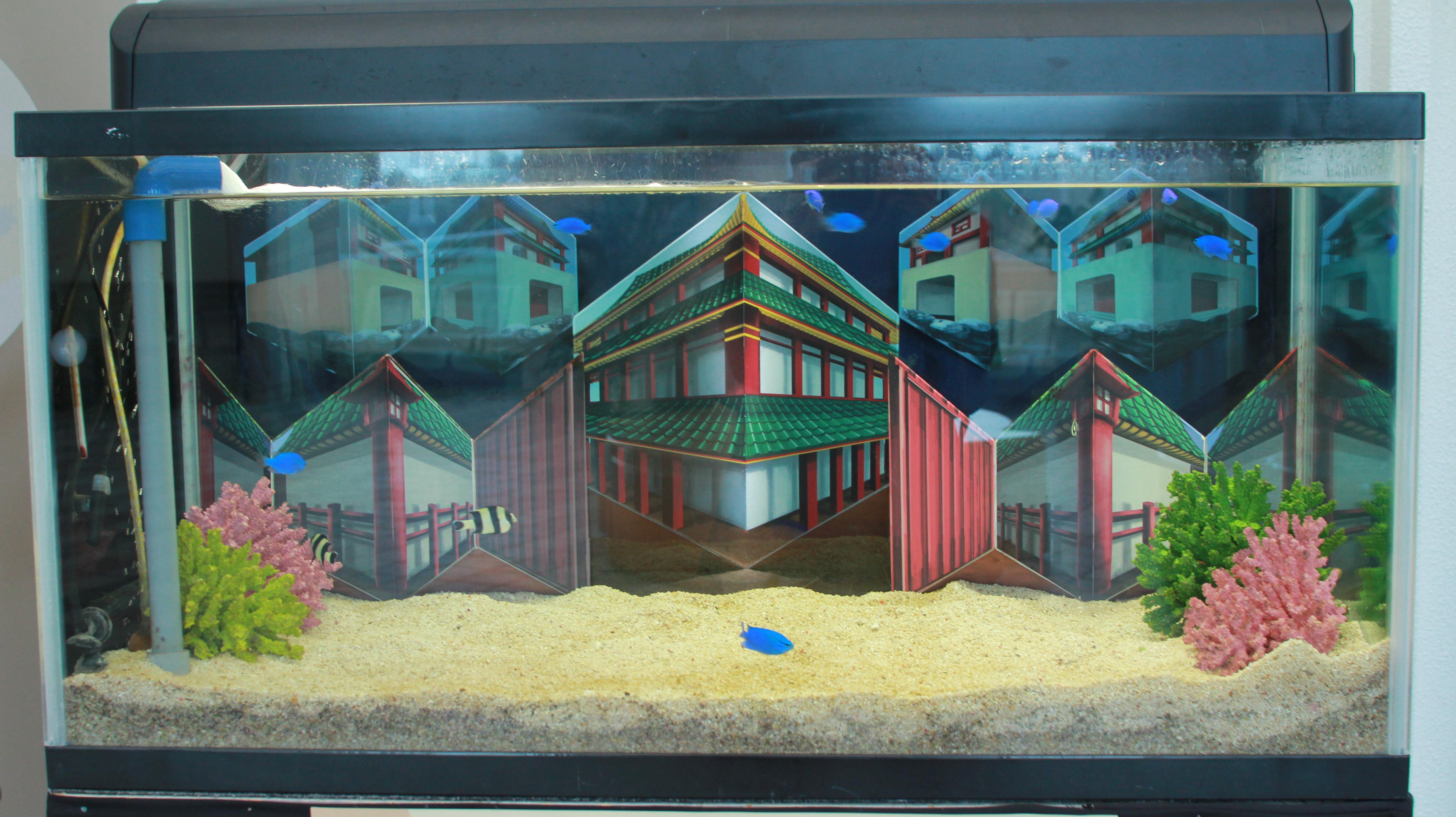 マリンワールド トリックアート水槽展