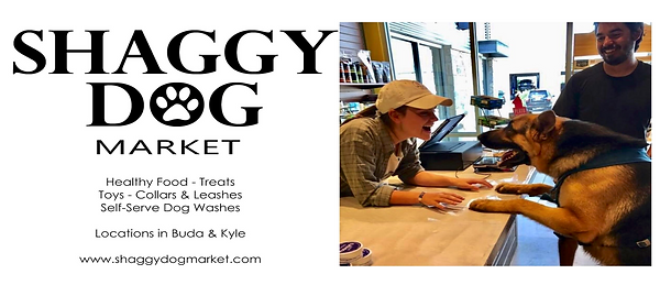 shaggy dog ad.png