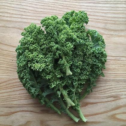 Kale, Greenhouse Grown
