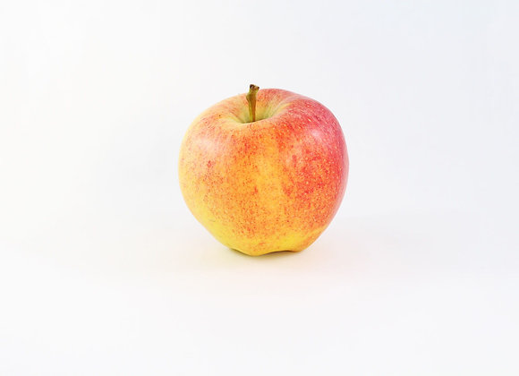 BC Apples, Gala