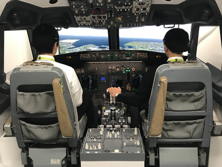 B737 Flight Training Device for airline training - Tokyo, Japan