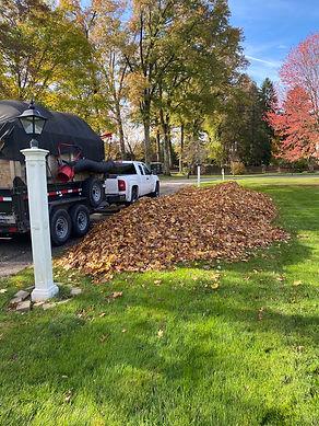 Miller Leaf pile Before.jpg
