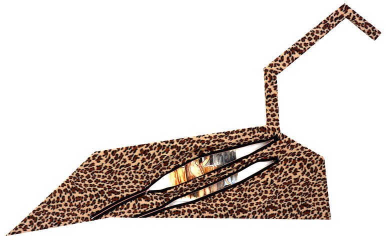(10) Cougar on Leo Contallation - O smal