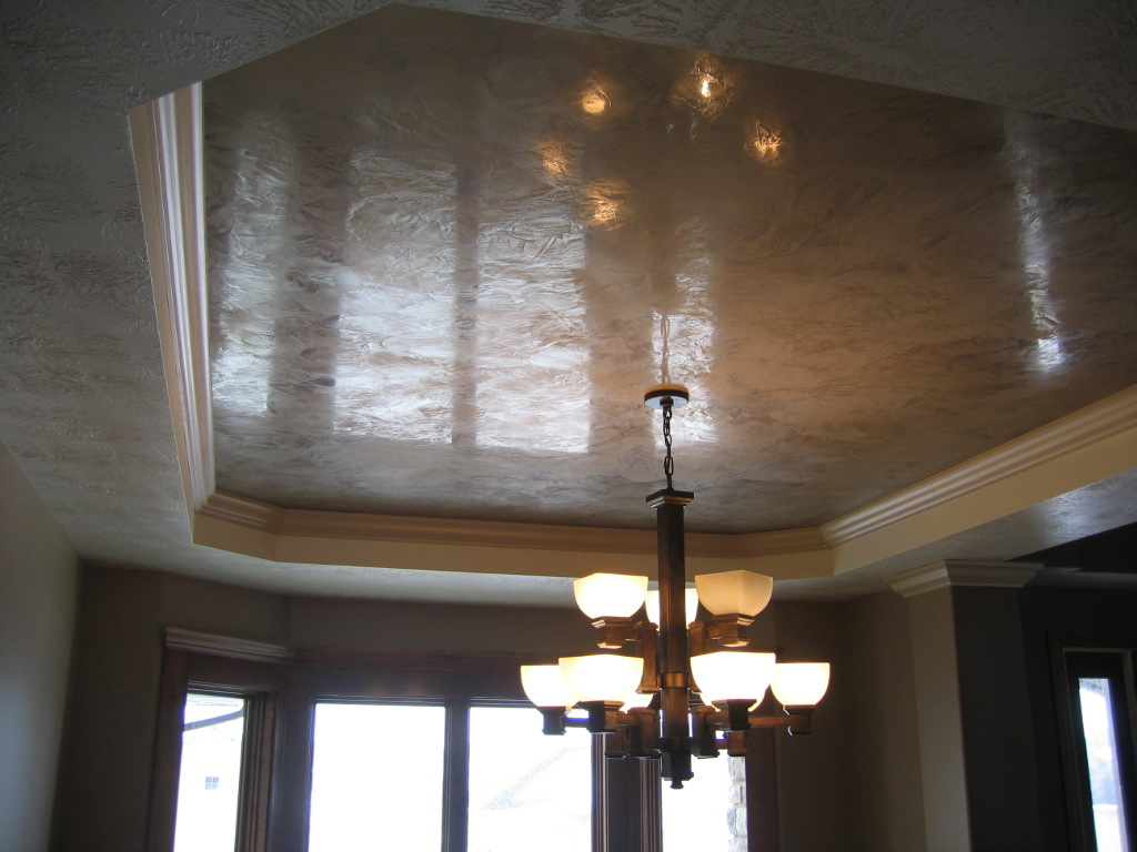 Decorative Plaster Ceiling Inset