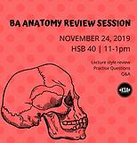 BA Anatomy Poster.png