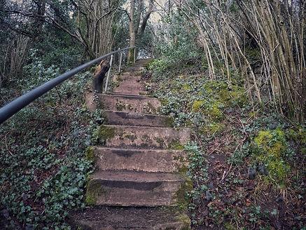 Chepstow 365 Steps