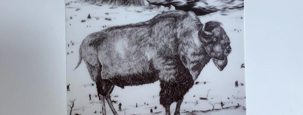 Buffalo Drawing Sticker
