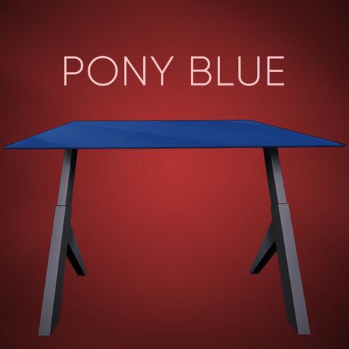 pony blue.jpg