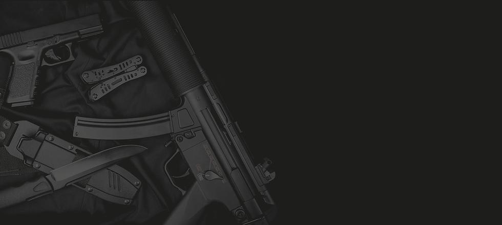 gun.webp