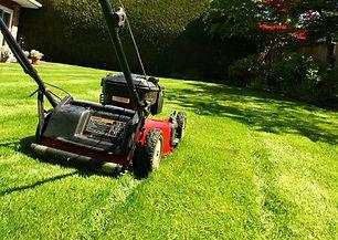 lawn_mowing.jpg
