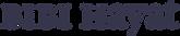 BibiHayat-Logo.png