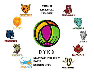 youth kicball.jpg