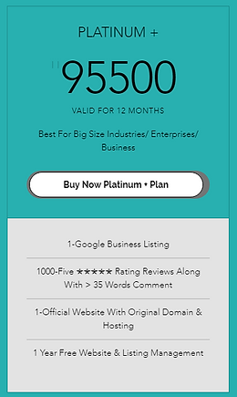 Pearl Organisation | Google Business Page Review Company in