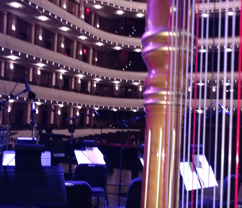 Harp at Smith Center