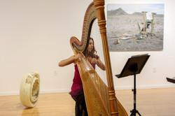 Harp music at museum