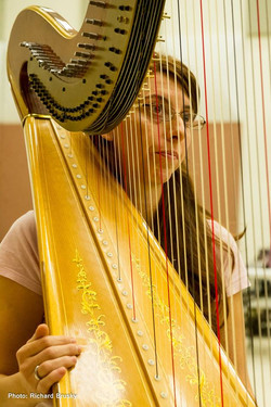 Harp in opera